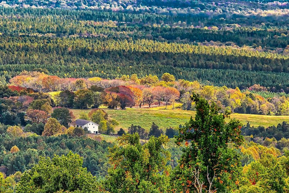 A view into the distance of a rustic farmstead from Carter Mountain in Charlottesville, Virginia USA.