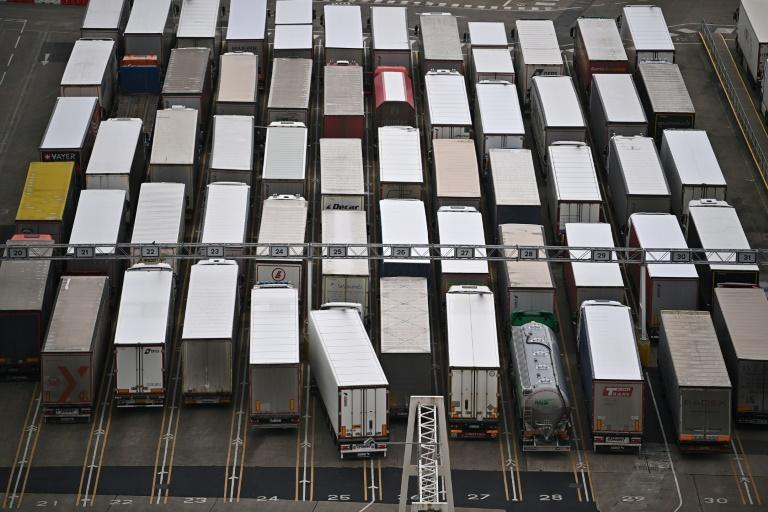 A rush of freight trucks 11 days ahead of the deadline has caused long tailbacks