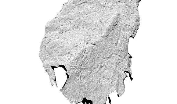 The images are the earliest known animal carvings in Scotland