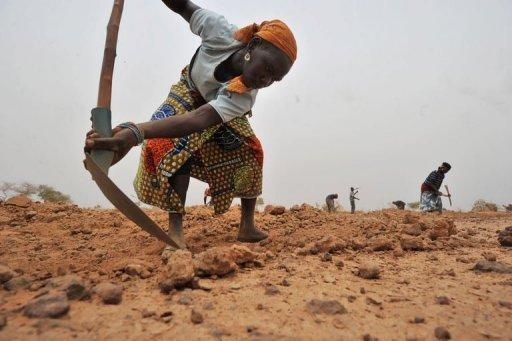 A young woman works the stony soil to dig holes shaped like half-moons, three metres wide and 50 centimetres deep