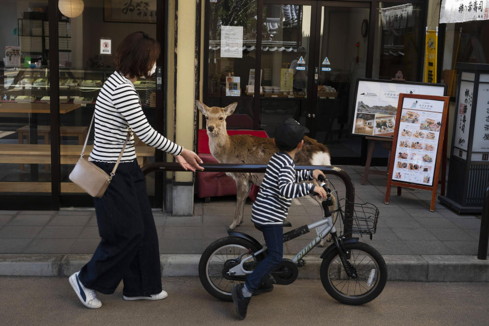 A young boy rides his bike past a deer wandering around the shopping area in Nara, Japan, Thursday, March 19, 2020. (AP Photo/Jae C. Hong)