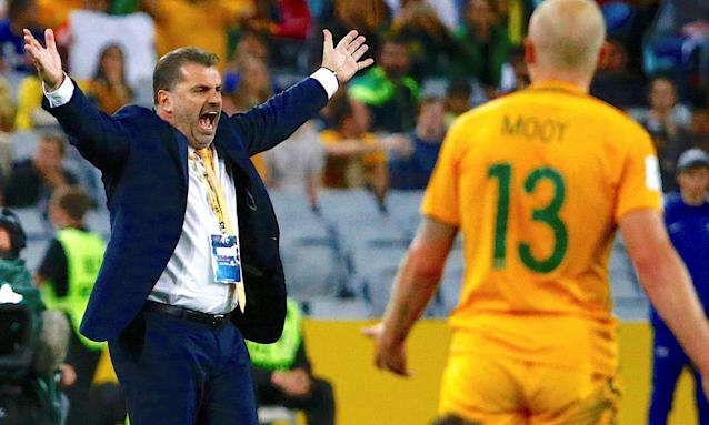Ange Postecoglou during the World Cup qualifier against Syria last week.