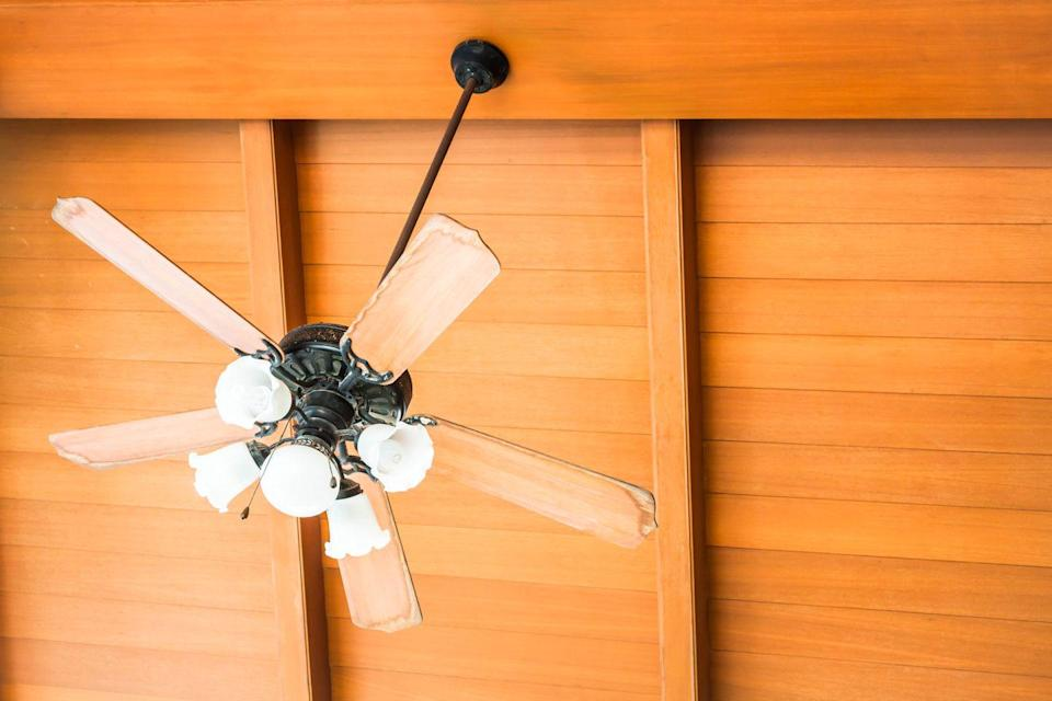 <p>If the tops of the blades of your ceiling fans aren't visible, they're easy to forget about. These things can easily collect dust and other dirt, and then kind of spread it around everywhere when it's on.. </p><p><strong>How to clean</strong>: You can buy brushes that are specifically made to clean ceiling fans. If you don't want to do that, put a pillow case over the blade and gently wipe the dust off without pressing too hard (you don't want to damage the blade). Gently clean the light bulbs or change them and also clean the pull cord. </p>