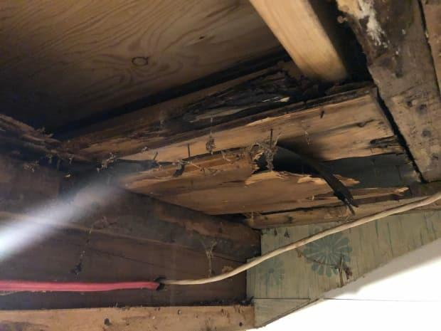 The ceiling in one of the houses leaks and the wood is deteriorating in places.