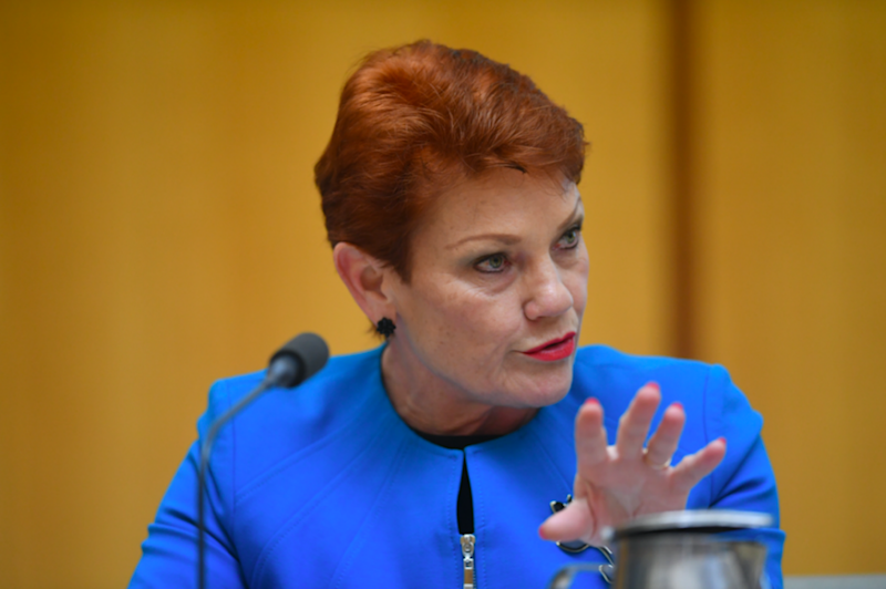 Pauline Hanson suggested Australia considers a 'Trump-like' Muslim ban on immigration. Photo: AAP