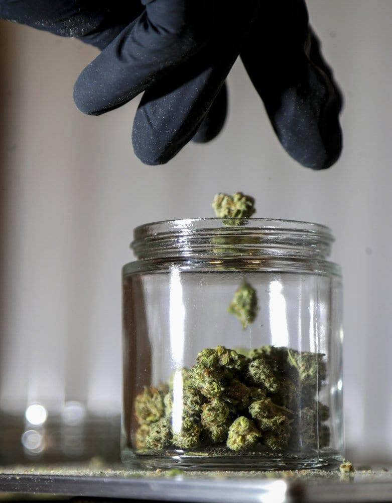 In this March 22, 2019 file photo, shows marijuana buds being sorted into a prescription jar at Compassionate Care Foundation's medical marijuana dispensary in Egg Harbor Township, N.J. (AP Photo/Julio Cortez, File)