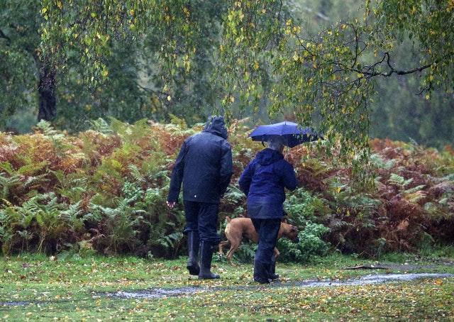 Dog walkers on Chobham Common in Surrey