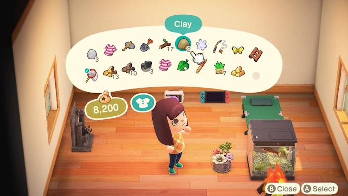 Animal Crossing House Inventory
