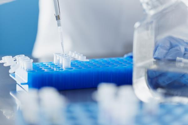 Even With Volatility, Investors Love Biotech ETFs