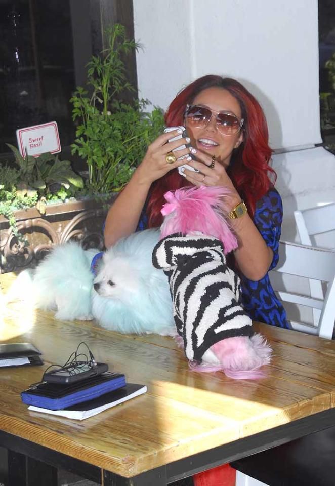 """The former Danity Kane singer has said her dogs Mary Ann and Ginger -- named after the characters from """"Gilligan's Island"""" -- """"are my family. I can 100 percent, forever say I love them unconditionally."""" (3/8/2012)"""