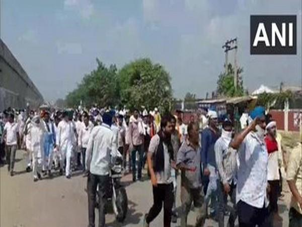 Farmers took out a protest rally over the introduction of three ordinances in the agriculture sector in Kurukshetra (Photo/ANI)