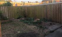 <p>'Our garden looked a complete tip so we did a little DIY landscape job to make it more pleasing on the eye. Now we love to spend time in the garden and avoid going out as much,' says Dave. </p>