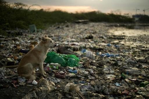 Low rates of rubbish collection in many parts of Asia is one of the main reasons why so much plastic waste ends up in the sea