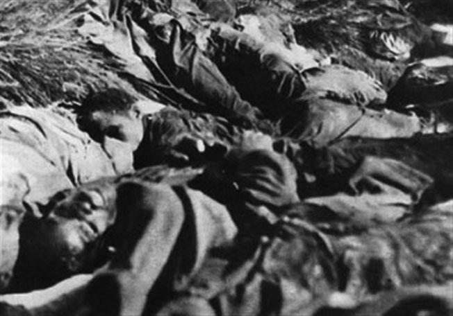 odies of the 11 men of the 333rd killed by the Germans at the Langer farm. Many showed signs of torture and mutilation before being shot by the SS. After investigating the incident, the Army quietly closed the case.