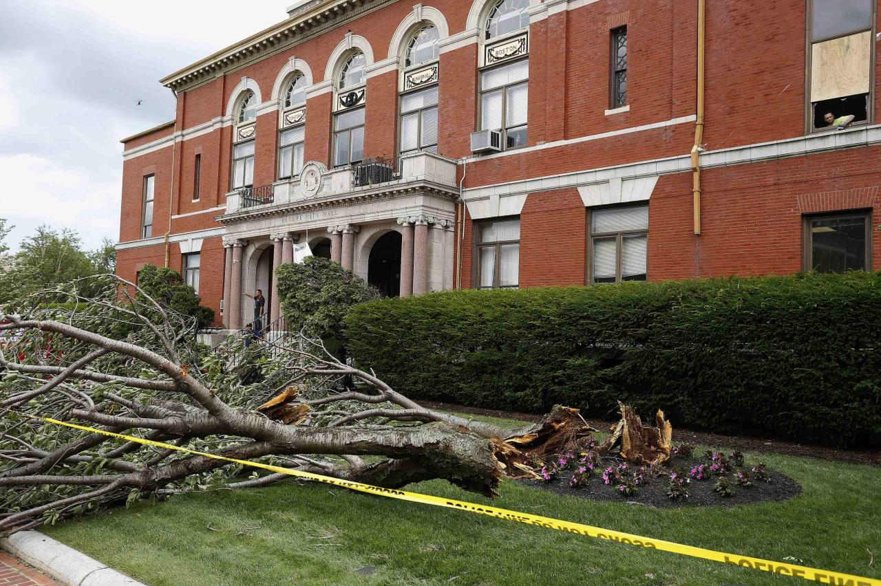 Fallen trees litter the lawn in front of City Hall on Broadway in Revere, Massachusetts, July 28, 2014. Police and emergency crews in Revere, outside Boston scrambled to clean up after a rare tornado touched down on Monday, downing power lines, damaging homes and overturning at least one car.The National Weather Service confirmed that a tornado touched down during a storm that brought heavy rains, lightning and flooding to Boston and many of its northern suburbs. State emergency management officials said they were not aware of major injuries or fatalities from the storm. REUTERS/Dominick Reuter (UNITED STATES - Tags: ENVIRONMENT DISASTER POLITICS)