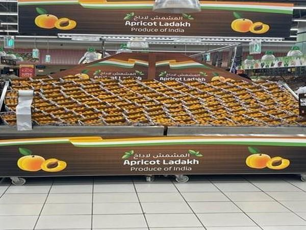 Ladakh Apricot on display in Lulu Group FMCG-Dubai. ( Photo credit: Ministry of Commerce & Industry)