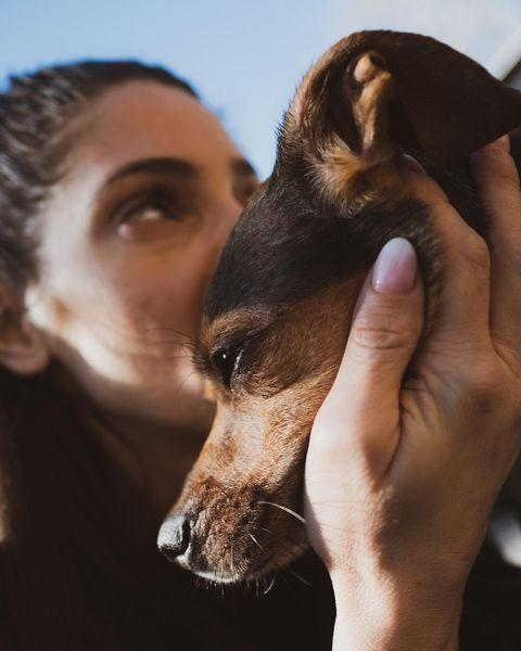 """<p>""""Although there is a hole in my heart right now, that only time can heal, knowing you're at peace now gives me comfort,"""" Ashley Greene wrote on Instagram of her dog Indy, <a href=""""https://people.com/pets/ashley-greene-dog-indy-dead/"""" rel=""""nofollow noopener"""" target=""""_blank"""" data-ylk=""""slk:who died at the age of 8"""" class=""""link rapid-noclick-resp"""">who died at the age of 8</a> on Feb. 3.</p> <p>""""Heaven gained a very special angel,"""" she continued. """"Thank you for being our girl.""""</p>"""
