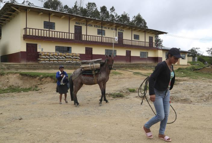 A woman pulls her horse carrying wood past the school where Free Peru party presidential candidate Pedro Castillo works as a teacher in Puna, Peru, Friday, April 16, 2021. Castillo, who has proposed rewriting Peru's constitution and deporting all immigrants living in the country illegally who commit crimes, will face rival candidate Keiko Fujimori in the June 6 presidential run-off election. (AP Photo/Martin Mejia)