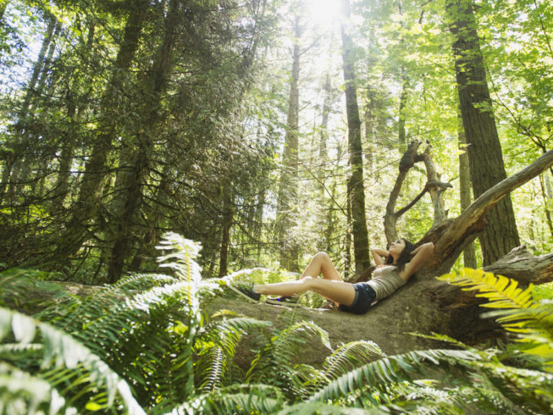 I tried forest bathing and it really did help me de-stress