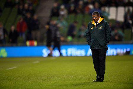 Rugby Union - Autumn Internationals - Ireland vs South Africa - Aviva Stadium, Dublin, Ireland - November 11, 2017 South Africa head coach Allister Coetzee before the match REUTERS/Clodagh Kilcoyne