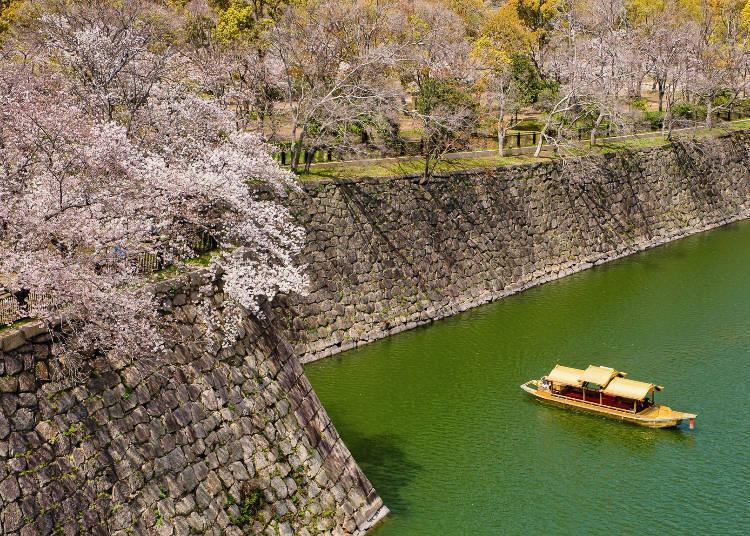 During the cherry blossom season, you can take a boat ride around the moat