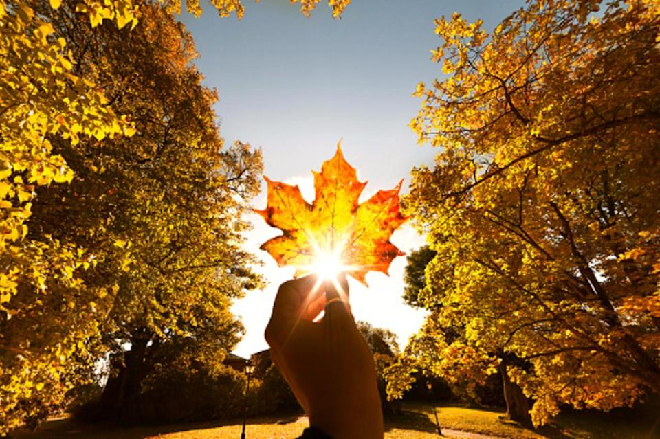 The science behind the Equinox
