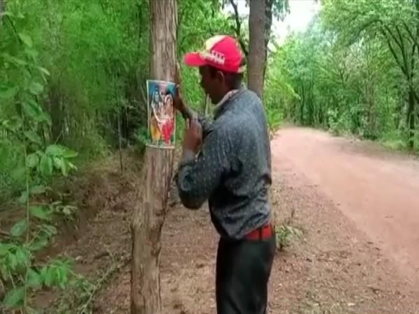 Virendra Singh pasting photo of Gods on trees to save them (Photo/ANI)