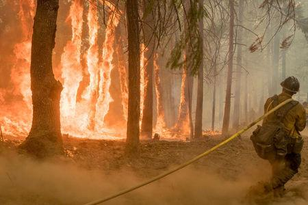 FILE PHOTO: A firefighter fights fire near torching trees as a wildfire burns near Yosemite National Park in this U.S. Forest Service photo released on social media from California, U.S., August 6, 2018. Courtesy USFS/Yosemite National Park/Handout via REUTERS