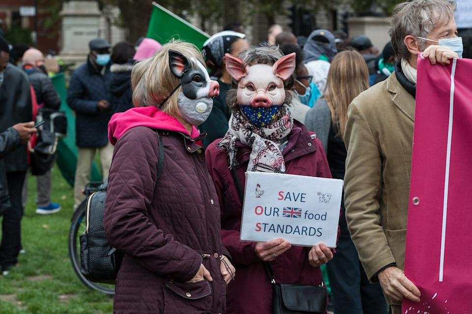 Demonstrators gather in Parliament Square to protest against a post-Brexit trade deal between the UK and the USA on 24 October, 2020 in London, England. Protesters demonstrate against the possibility of opening the NHS to American healthcare companies, lowering food standards, deregulation of environmental and data privacy laws as part of the UK - US trade deal. (Photo by WIktor Szymanowicz/NurPhoto via Getty Images)
