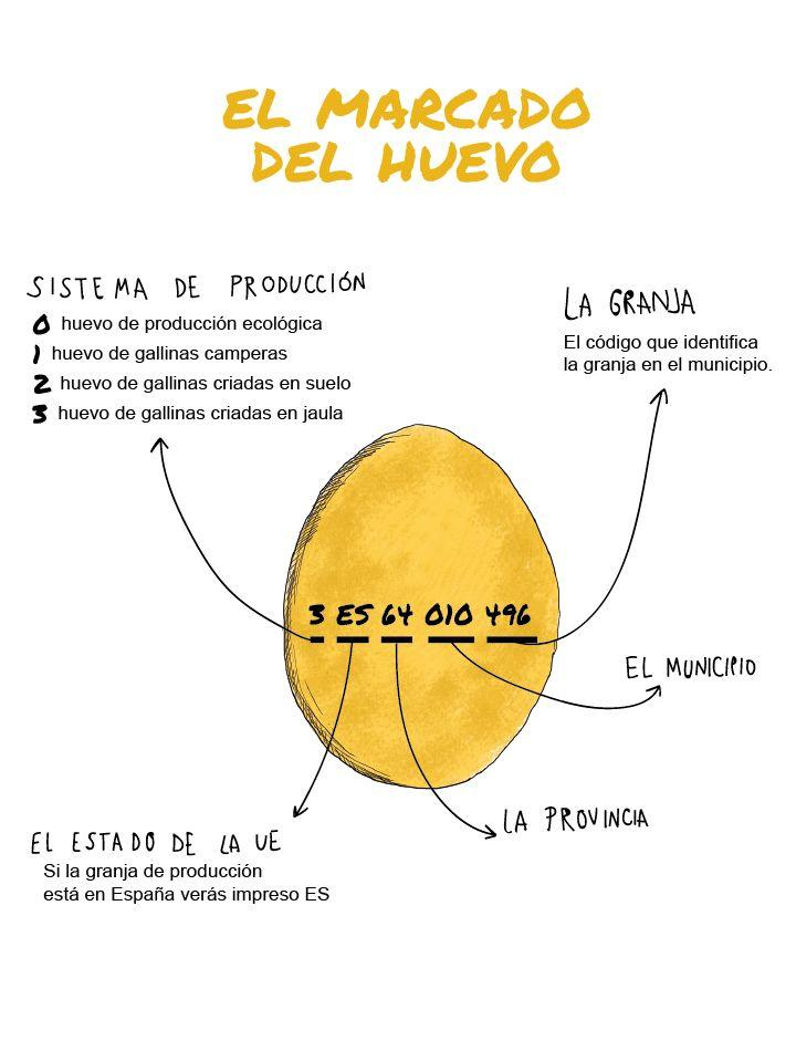 Significado del marcado del huevo (Photo: Instituto del Huevo)