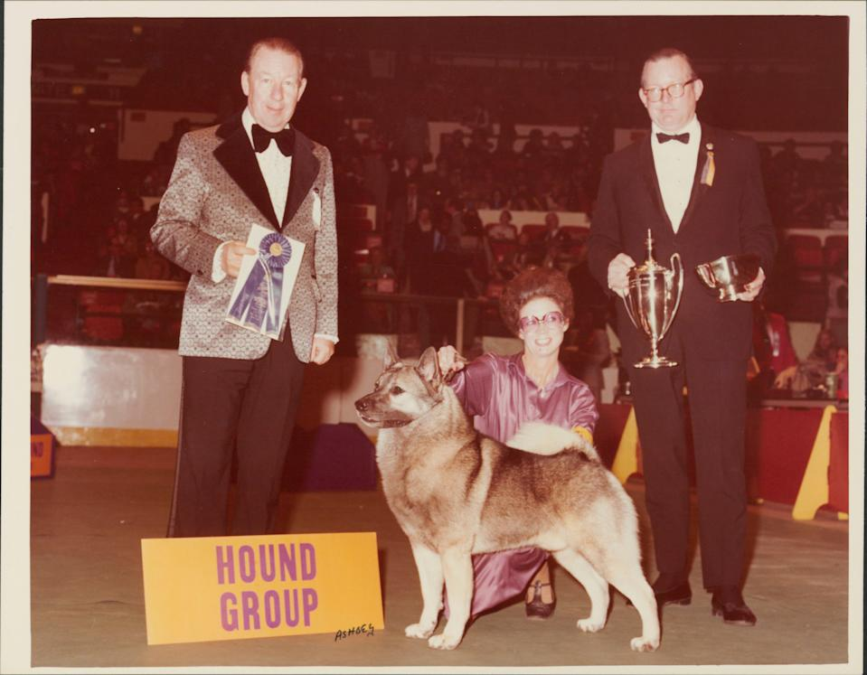 Patricia Trotter at the 1979 Westminster Kennel Club show with Hound Group winner, Ch. Vin-Melca's Nimbus, a Norwegian Elkhound owned by Patricia V. Craige & Harold Shuler.