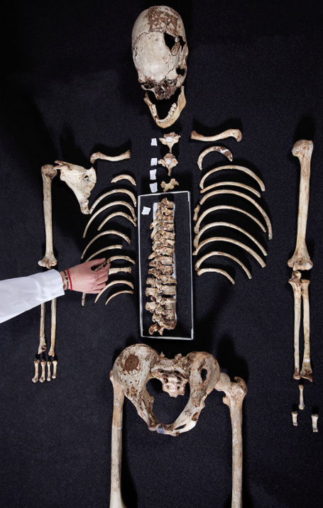 <em>Britain's oldest complete skeleton was unearthed more than a century ago in Gough's Cave in Somerset (PA)</em>