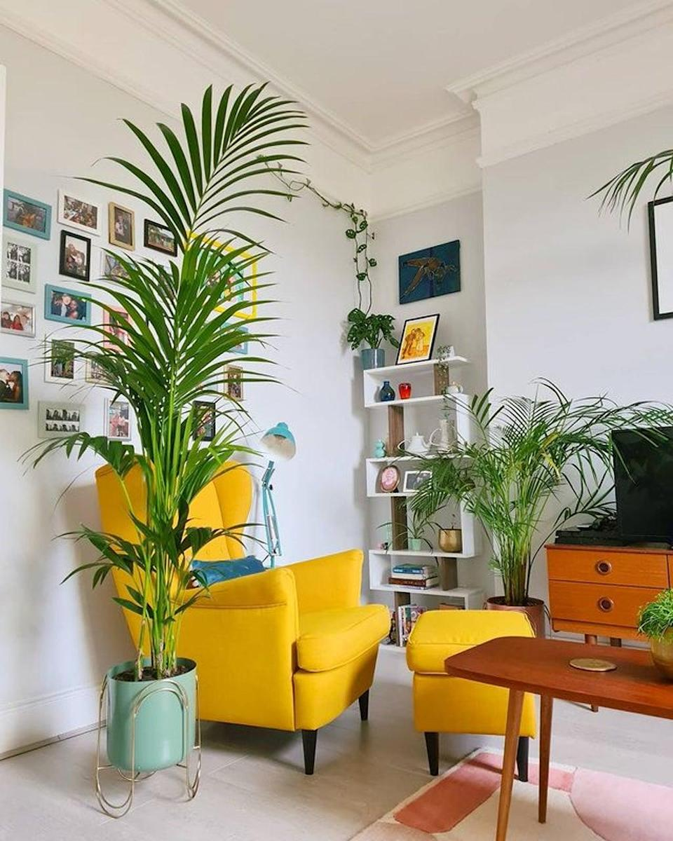 Not allowed to paint the walls? Turn to cushions and cacti for colour instead (@casademodelai)