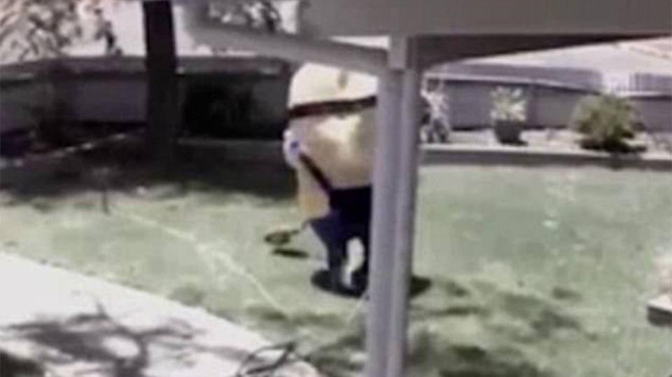 The minion was filmed entering Mr Nickel's Kalgoorlie home before cutting out a chunk of lawn. Source: Facebook