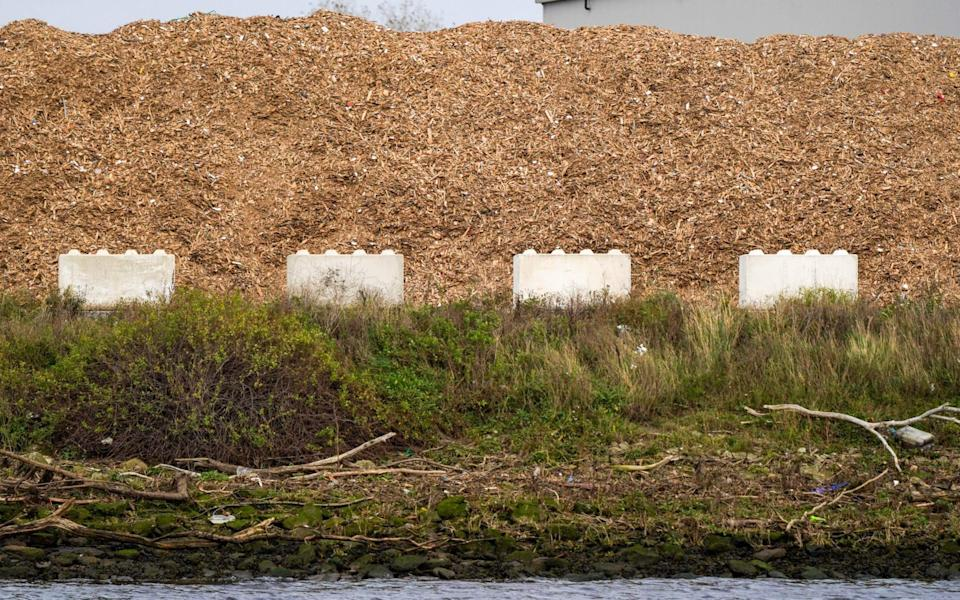 Wood chip at the Stobart Energy biomass plant in Teesside - Ian Forsyth/Bloomberg