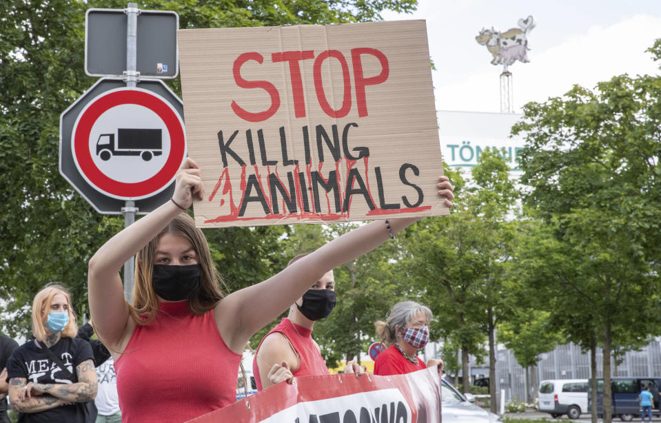 Animal rights activists protest in front of the Toennies meatpacking plant and slaughterhouse in Rheda-Wiedenbrueck, Germany, Saturday, June 20, 2020. Hundreds of new coronavirus cases are linked to the large meatpacking plant, officials ordered the closure of the slaughterhouse, as well as isolation and tests for everyone else who had worked at the Toennies site — putting about 7,000 people under quarantiner. (Friso Gentsch/dpa via AP)