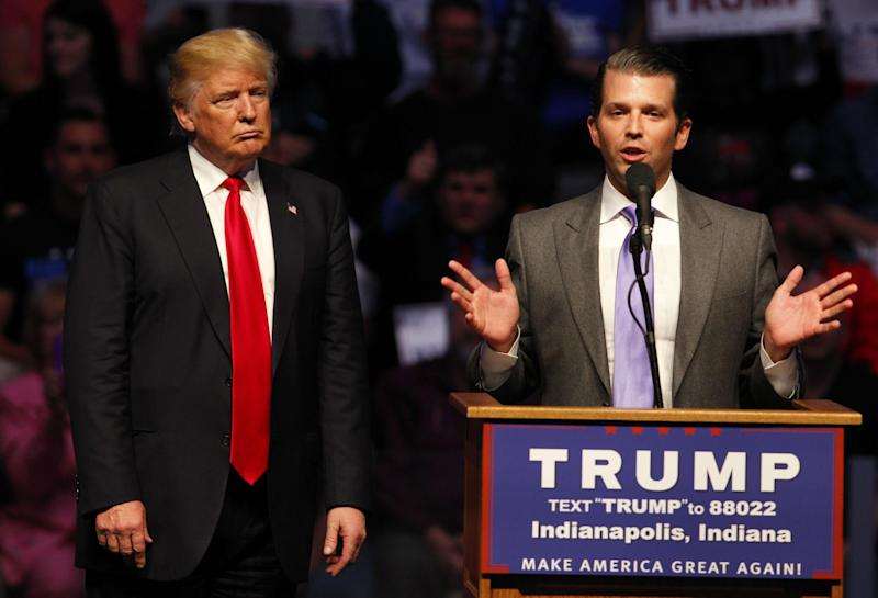 Donald Trump Jr and his brother have been running the Trump business empire since January: AP