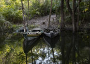 Small boats remain idle on the banks of the Tapajos river in Alter do Chao Para state, Brazil, Wednesday, Aug. 26, 2020. Environmentalists say that up to 500 species of trees and just as many of animals, including a kind of local jaguar, are increasingly under threat of extinction in the area. (AP Photo/Andre Penner)