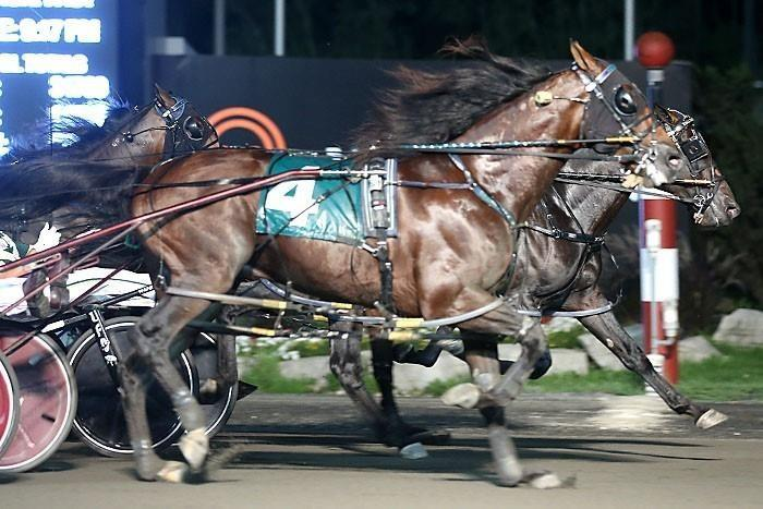 Leaving family to race in Ontario very tough for driver Yannick Gingras