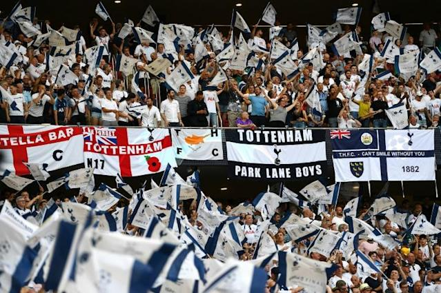 Tottenham Hotspur fans cheer their team before the UEFA Champions League final football match against Liverpool in Madrid in June 2019 (AFP Photo/GABRIEL BOUYS )