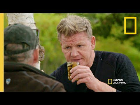 """<p>If you're the Anthony Bourdain/<em>Somebody Feed Phil</em> type, <em>Gordon Ramsay: Uncharted</em> will probably be palatable for your television taste buds. The series follows world-renowned chef Gordon Ramsay as he travels to culinary destinations far and wide, from Louisiana to Laos.</p><p><a class=""""link rapid-noclick-resp"""" href=""""https://go.redirectingat.com?id=74968X1596630&url=https%3A%2F%2Fwww.disneyplus.com%2Fseries%2Fgordon-ramsay-uncharted%2F3UDBjRNsA7fq&sref=https%3A%2F%2Fwww.redbookmag.com%2Flife%2Fg37132419%2Fbest-disney-plus-shows%2F"""" rel=""""nofollow noopener"""" target=""""_blank"""" data-ylk=""""slk:Watch Now"""">Watch Now</a></p><p><a href=""""https://www.youtube.com/watch?v=rHgDWBhzUOE"""" rel=""""nofollow noopener"""" target=""""_blank"""" data-ylk=""""slk:See the original post on Youtube"""" class=""""link rapid-noclick-resp"""">See the original post on Youtube</a></p>"""