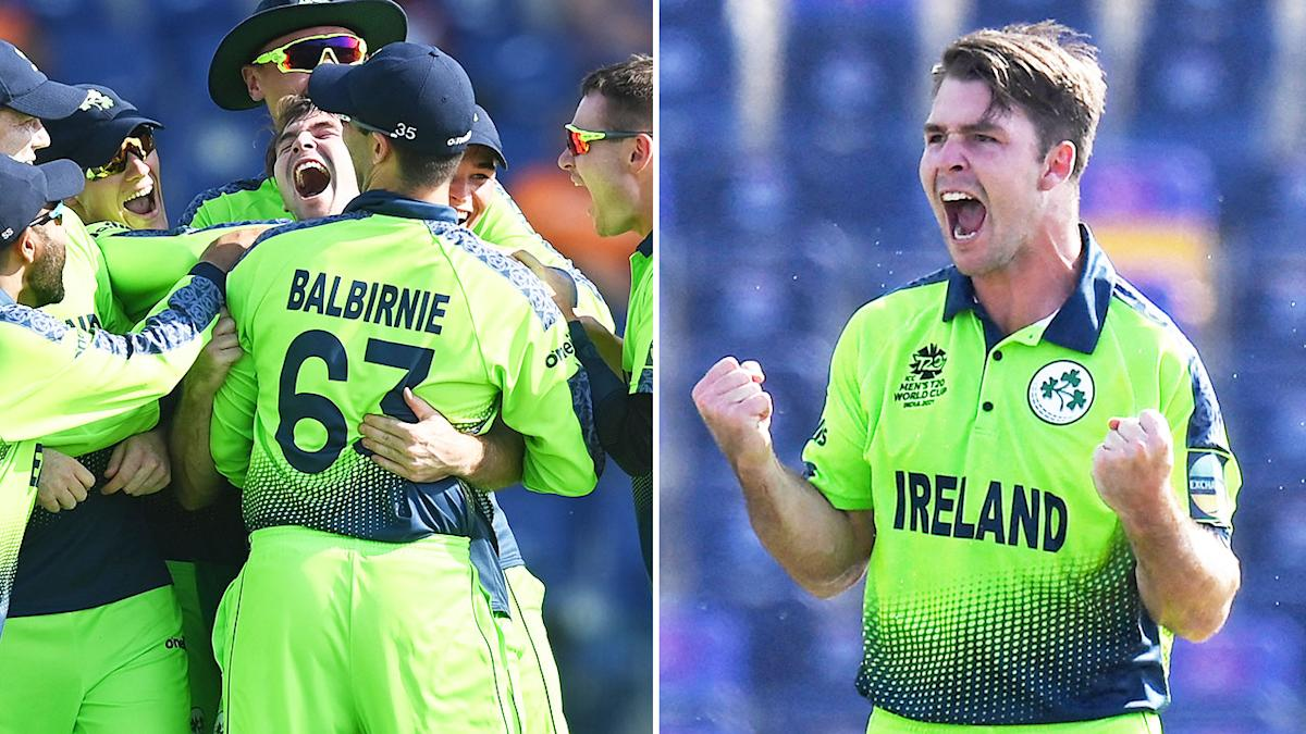 Cricket fans lose it over 'insane' T20 World Cup scenes