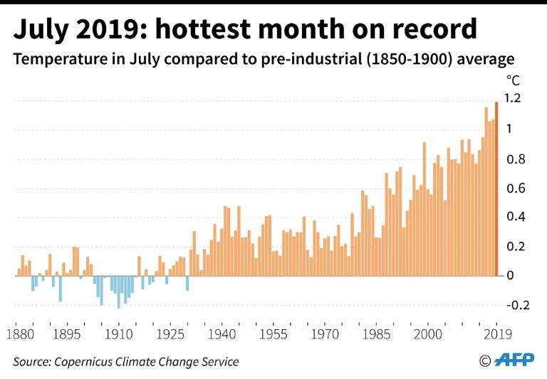 July 2019 was the hottest of all months ever recorded (AFP Photo/Paz PIZARRO)