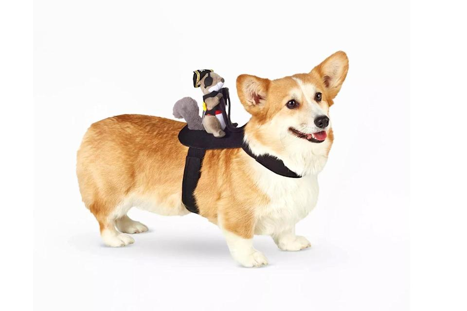 """<p>Turn your canine into a chariot for a squirrel pirate with this simple costume. </p> <p><strong>Buy it!</strong> Squirrel Pirate Rider Dog Costume, $10.00; <a href=""""https://goto.target.com/c/249354/81938/2092?subId1=PEO25HalloweenCostumesforDogsthatWillHaveTrickorTreatersHowlingwithJoykbender1271PetGal12909733202109I&u=https%3A%2F%2Fwww.target.com%2Fp%2Fsquirrel-pirate-rider-dog-and-cat-costume-hyde-eek-boutique%2F-%2FA-82325168"""" rel=""""sponsored noopener"""" target=""""_blank"""" data-ylk=""""slk:Target.com"""" class=""""link rapid-noclick-resp"""">Target.com</a></p>"""