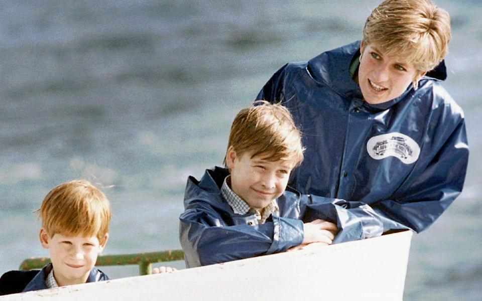 Diana was concerned that the gap between the heir and the spare would drive a wedge between her boys - Hans Dderyk/AP