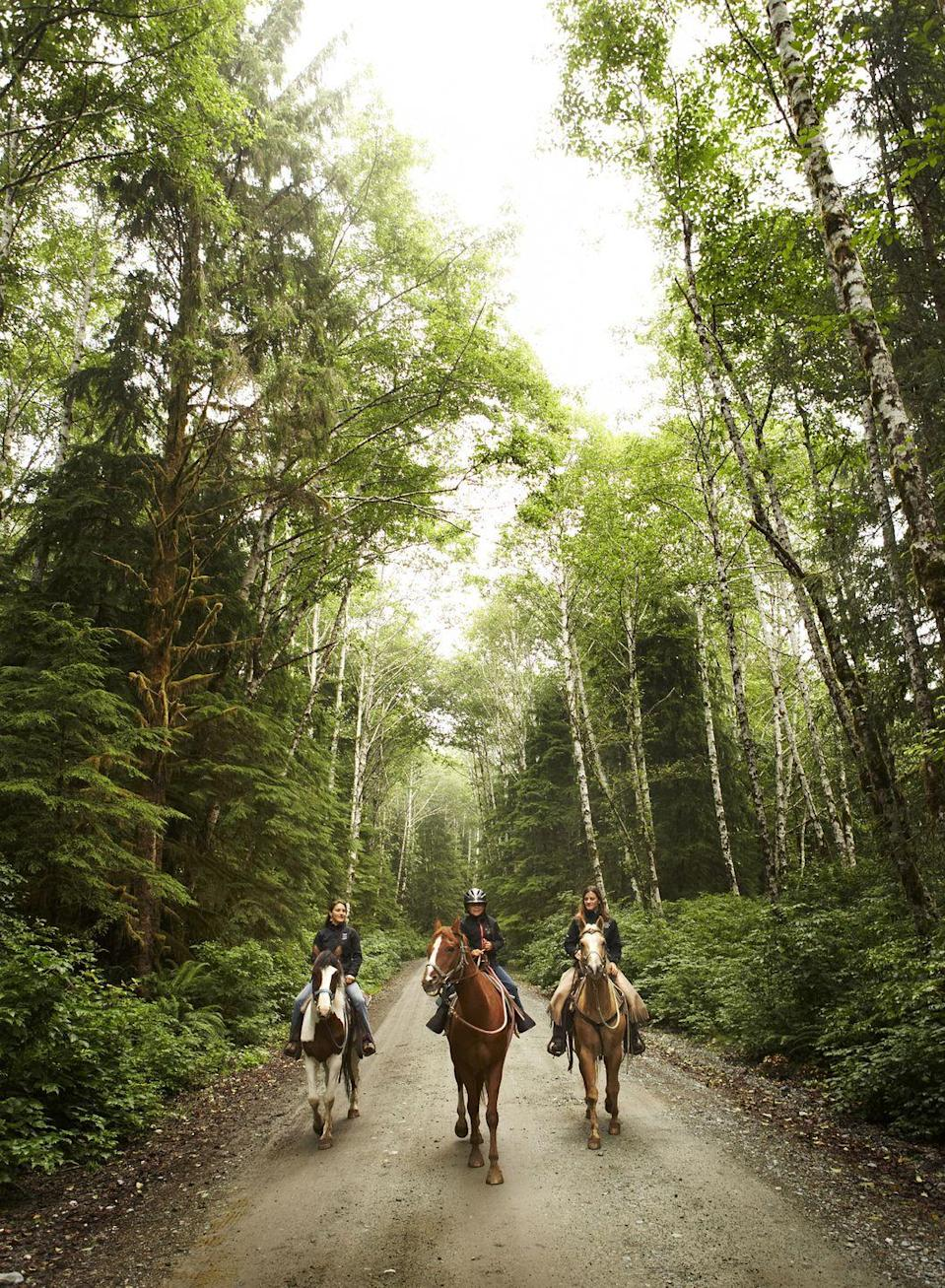 "<p>Hoping to spend your birthday outdoors? Instead of walking around like any other day, consider making it extra special with a horseback ride with your closest friends.</p><p><a class=""link rapid-noclick-resp"" href=""https://go.redirectingat.com?id=74968X1596630&url=https%3A%2F%2Fwww.walmart.com%2Fip%2FScoop-Women-s-Sparkle-Cowboy-Hat%2F914261030&sref=https%3A%2F%2Fwww.thepioneerwoman.com%2Fhome-lifestyle%2Fentertaining%2Fg34192298%2F50th-birthday-party-ideas%2F"" rel=""nofollow noopener"" target=""_blank"" data-ylk=""slk:SHOP COWBOY HATS"">SHOP COWBOY HATS</a></p>"
