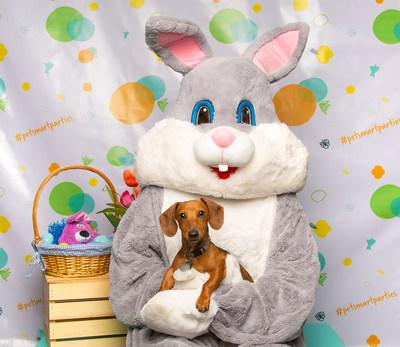 PetSmart® Hosts Free Pet Photos with the Easter Bunny