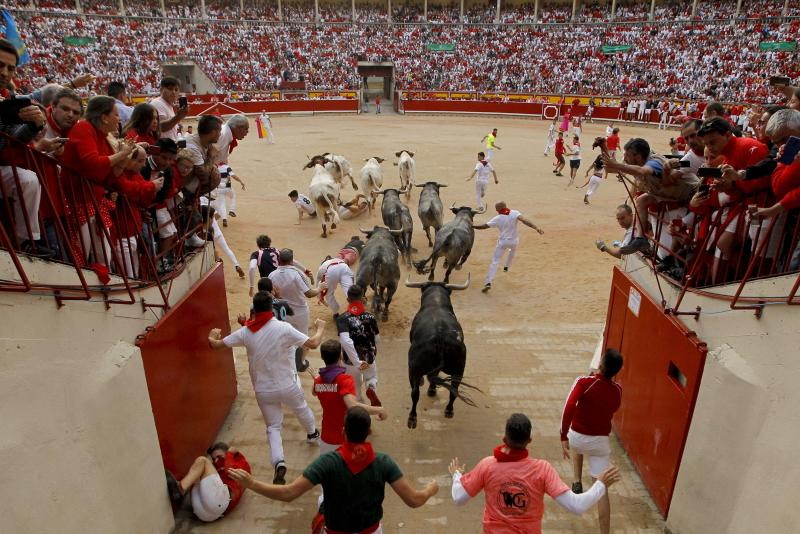 Five bull runners hospitalised in Pamplona festival