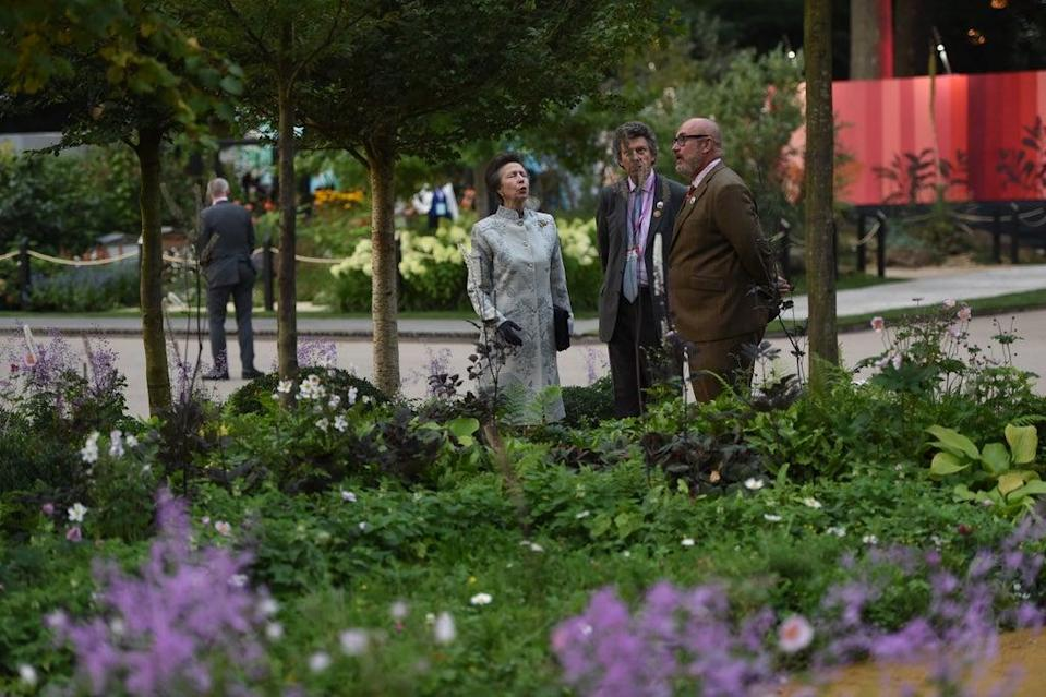 The Princess Royal during the visit to the RHS Chelsea Flower Show (Eddie Mulholland/Daily Telegraph) (PA Wire)