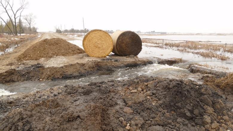 Emergencies declared in 3 Manitoba municipalities due to flooding